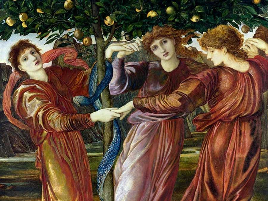 The garden with the Golden Apples of Hesperides